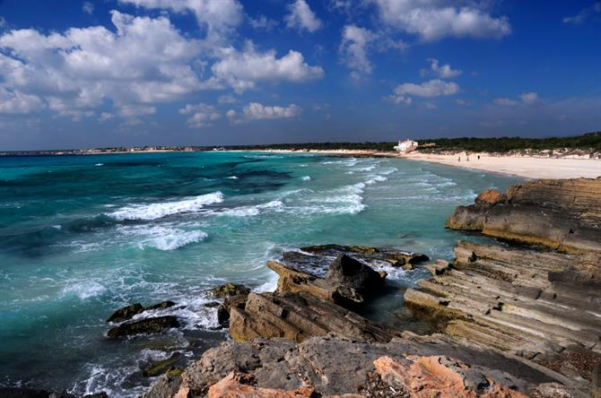 This beach and 4 km of coastline have been declared a natural area protected by the Law of Natural Areas of the Autonomous Community of the Balearic Islands.